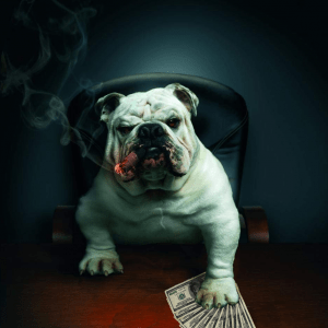 Bulldog Cigar Club